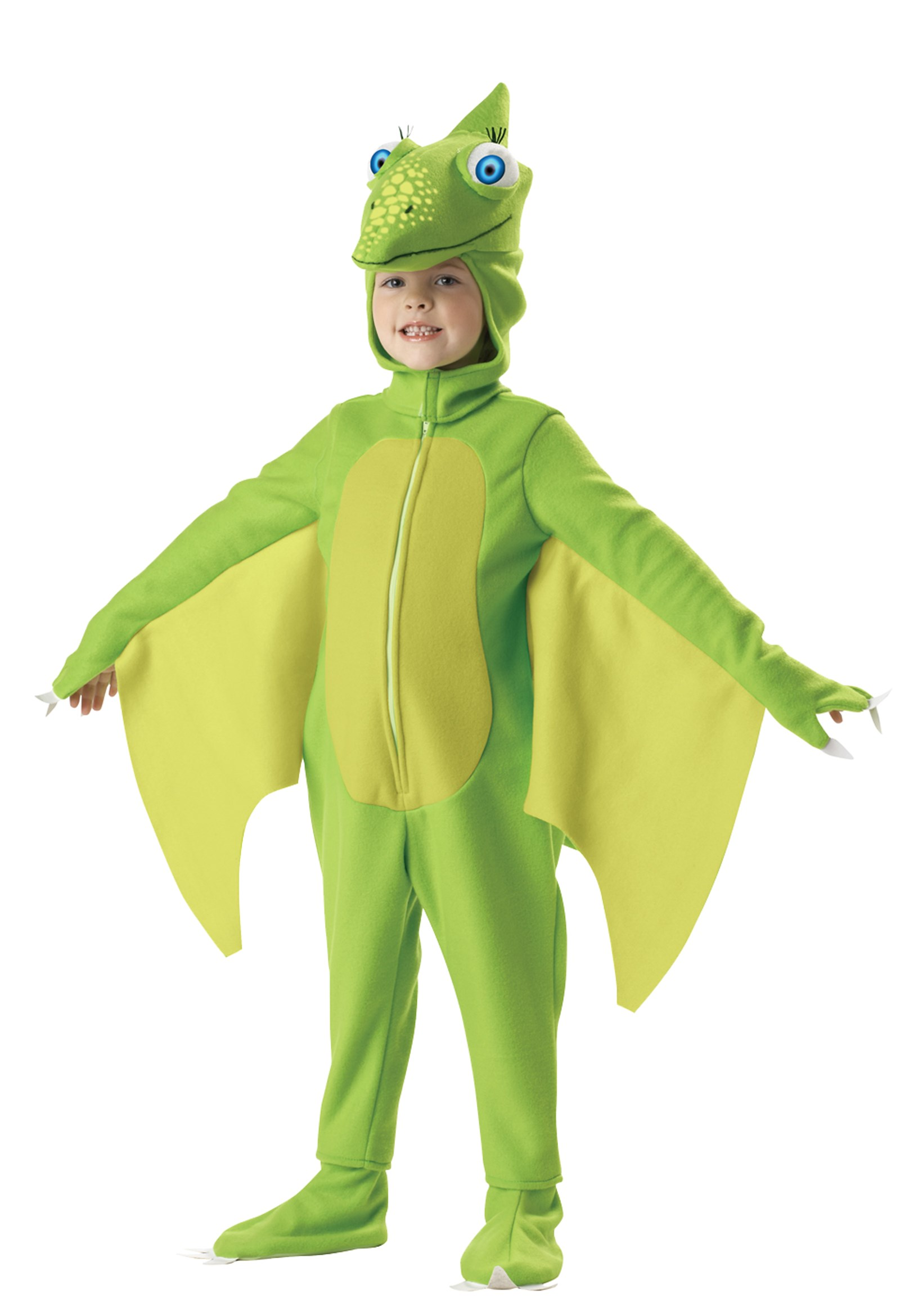 Dinosaur Train Tiny Toddler / Child Costume (4-6)