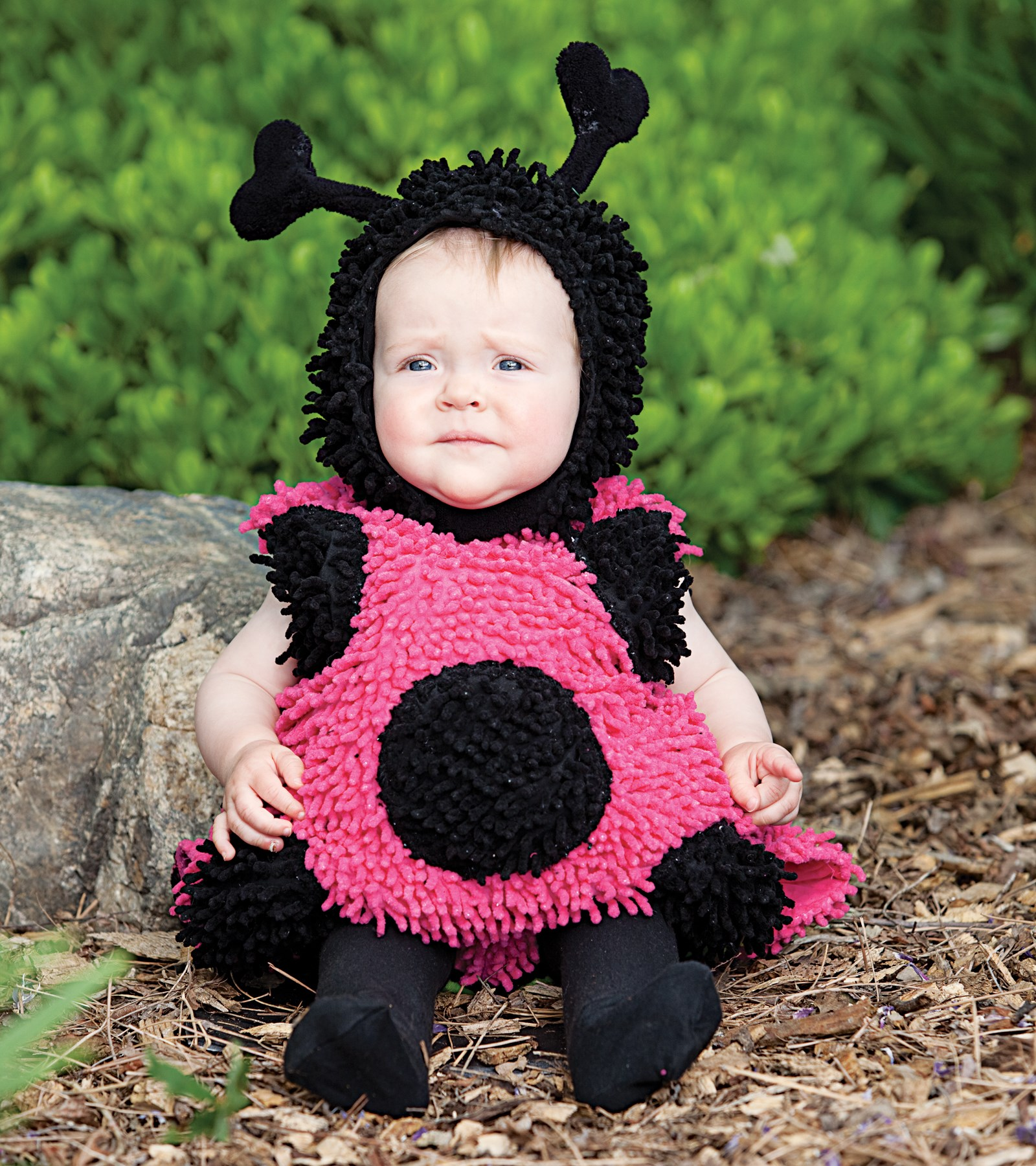 Image of Baby Lady Bug Infant / Toddler Costume 18 Months/2T