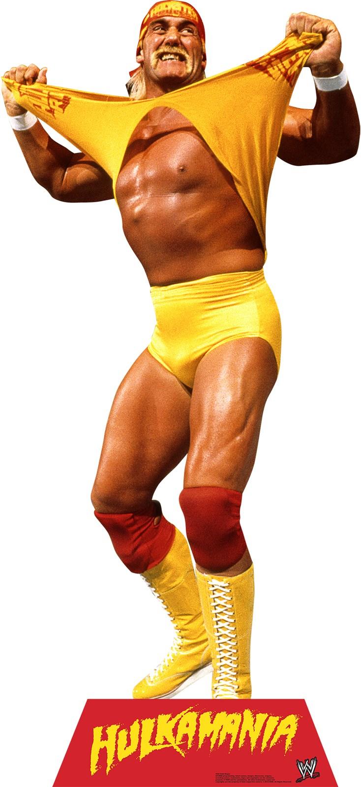 Image of WWE Party - Hulk Hogan Standup