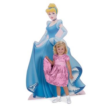 Disney Cinderella Standup