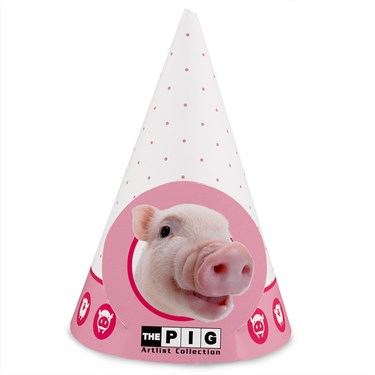 THE PIG Cone Hats