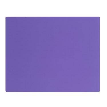Purple Activity Placemats