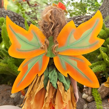 Fall Fairy Wings Child