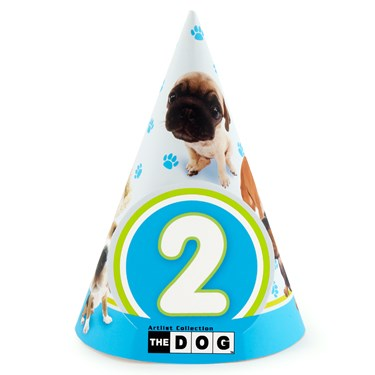 THE DOG 2nd Birthday Cone Hats