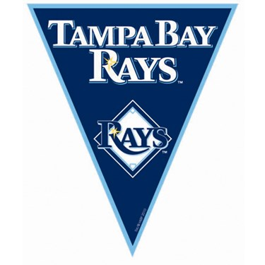 Tampa Bay Rays Baseball Pennant Banner