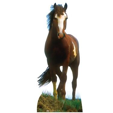 Mustang Horse Standup