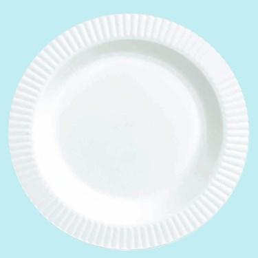 White Premium Plastic Banquet Dinner Plates