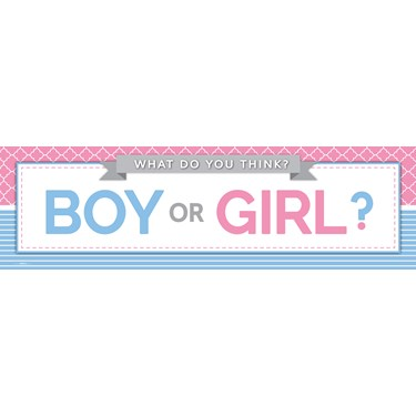 Gender Reveal Party Banner (STD)
