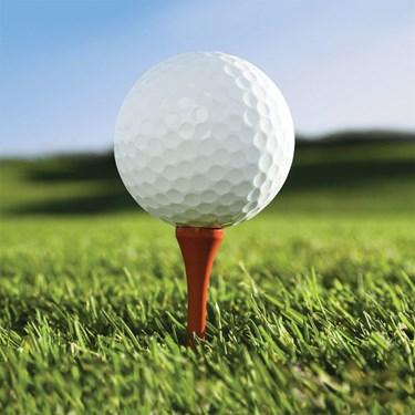 Golf Beverage Napkins (16)