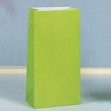 Kiwi Paper Favor Bags (12)