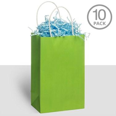 Kraft Handle Bags Kiwi (10)