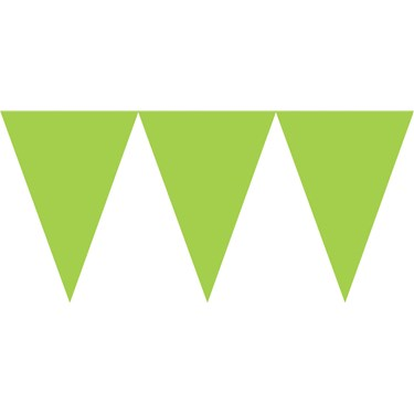 Lime Green Paper Pennant Banner