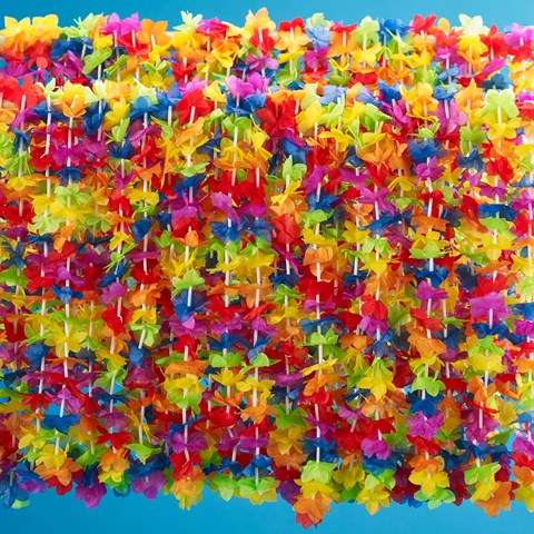 Silk 'N Petals Rainbow Floral Leis