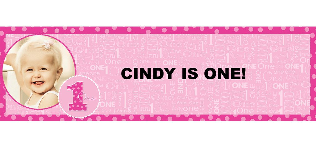 Everything One Girl Personalized Photo Banner