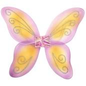 Girls Princess Wings