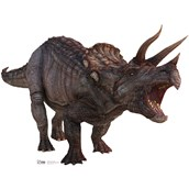 Triceratops Cardboard Standup - 4' Tall