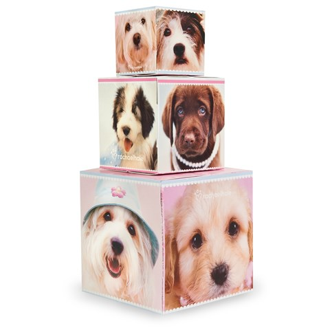 rachaelhale Glamour Dogs Building Blocks Centerpiece / Gift Boxes
