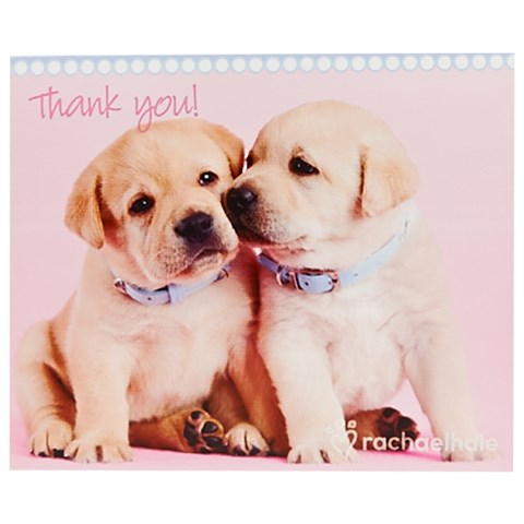 rachaelhale Glamour Dogs Thank-You Notes (8)