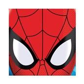 Spider Hero Dream Party Beverage Napkins