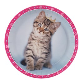 rachaelhale Glamour Cats)