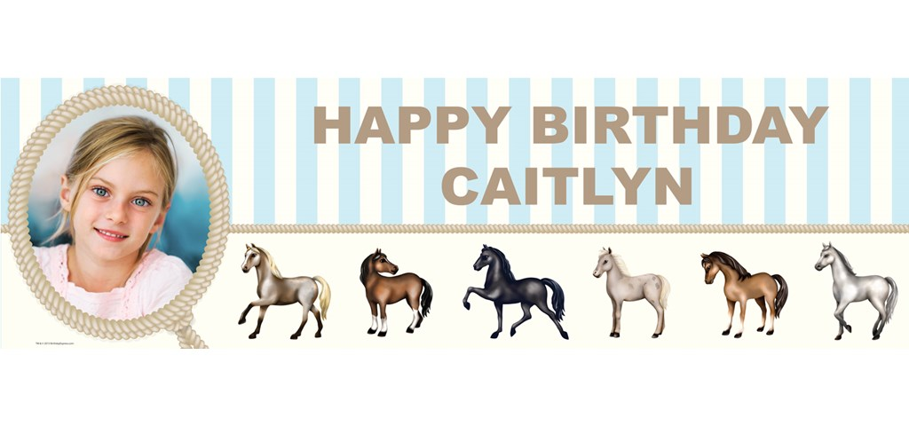 Ponies Personalized Photo Banner