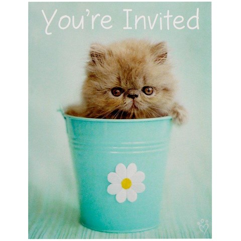 rachaelhale Glamour Cats Invitations