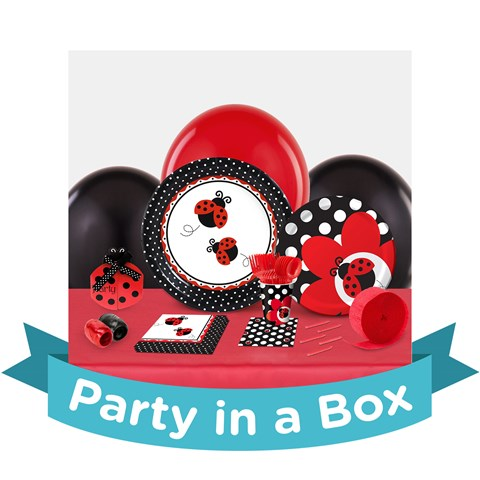 LadyBug Fancy 1st Birthday Party in a Box