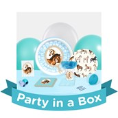 Ponies Party in a Box