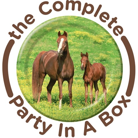 Wild Horses Party in a Box