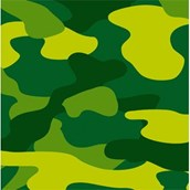 Army Party Beverage Napkins