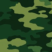 Army Party Napkins