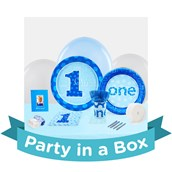 Everything One Boy Party in a Box For 8