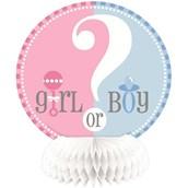 Gender Reveal 6 Mini Honeycomb Decoration