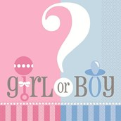 Gender Reveal Luncheon Napkins (20)