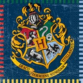 Harry Potter Lunch Napkins (16)