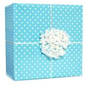 Pastel Blue Small Polka Dot Gift Wrap Kit