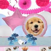 Rachael Hale Glamour Dogs Deco Kit