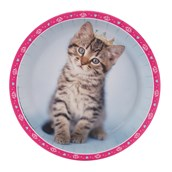 rachaelhale Glamour Cats Dinner Plates
