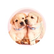 rachaelhale Glamour Dogs Dessert Plates