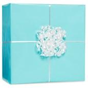 Robins Egg Blue Gift Wrap Kit