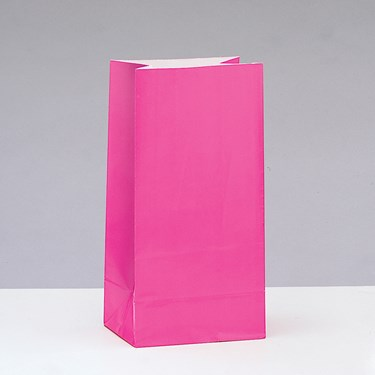 Pink Paper Favor Bags (12)