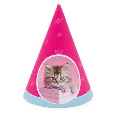rachaelhale Glamour Cats Cone Hats