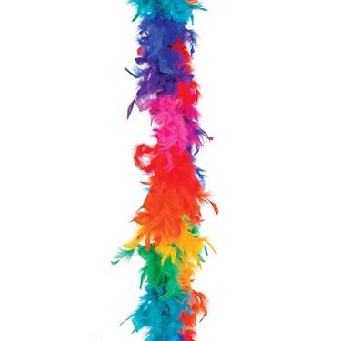 Rainbow Boa
