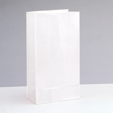 White Paper Favor Bags (12)